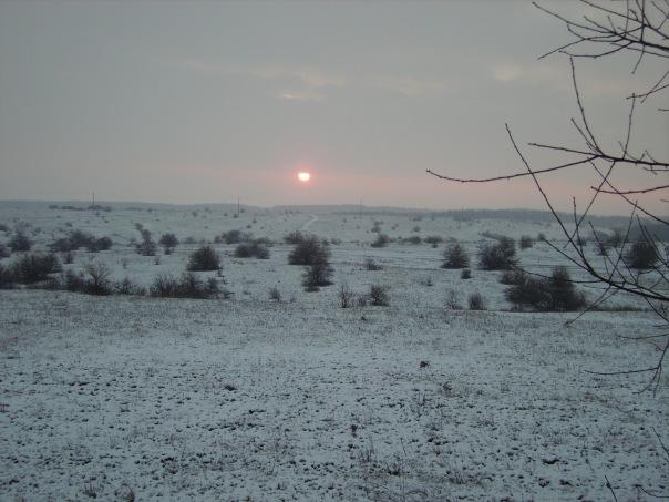 Подснежник 2011