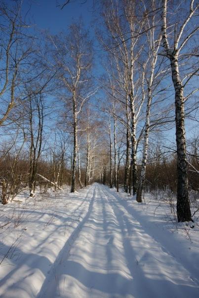 Щепкинский ЛЁс - Первая мультигонка 2011