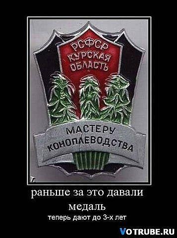 http://cs9902.vkontakte.ru/u56810494/114473754/x_717b08ea.jpg