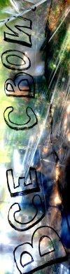 Логотип ВСЕ СВОИ - Фестиваль свободной музыки.