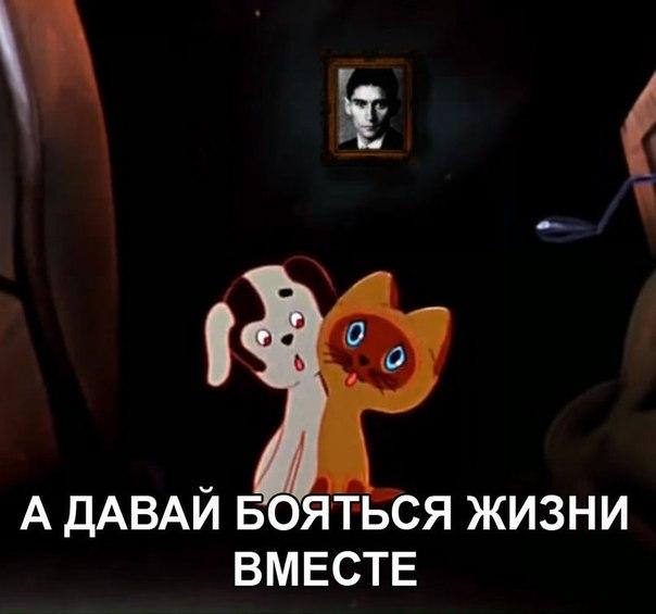 http://cs9909.userapi.com/u16963476/125430211/x_70dedb2c.jpg