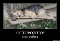 Олег Фомин, 26 августа 1983, Орел, id162211823