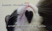 Павел Светлана, 1 сентября , Липецк, id127734872