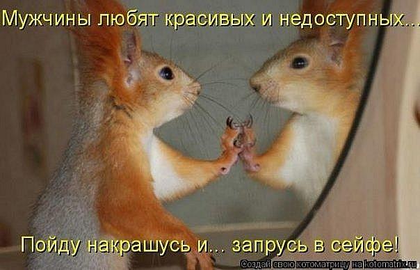 фото приколы про животных с надписями новые
