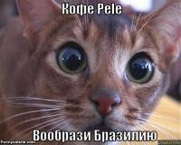 Анрей Климович, 27 апреля , Уфа, id100651564