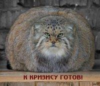 Александр 7777777, 14 апреля 1991, Москва, id87720107