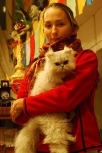 Мусь Эллипс, 23 января , Москва, id32676294