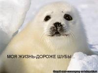 Надежда Нечепуренко, 2 января 1997, Новый Уренгой, id74013449