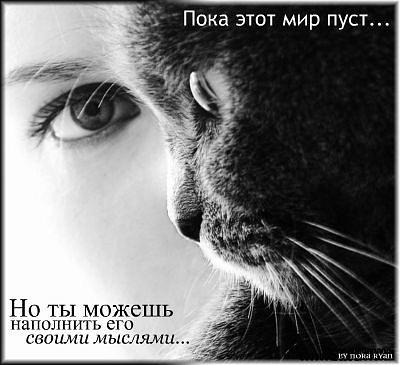 http://cs9972.vkontakte.ru/u32611448/121717953/x_ec95fc6a.jpg