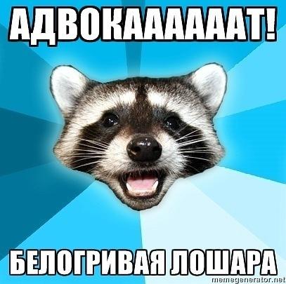 http://cs9973.vkontakte.ru/u120564864/-5/x_165d105a.jpg