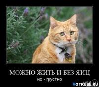 Денис Стейл, 8 декабря , Москва, id78078856