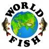 База World-Fish: рыбалка на Ахтубе (Трехречье)
