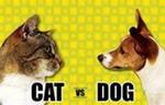 содержание лабрадoра в вольере, кожные заболевания у собак пелодера фото.