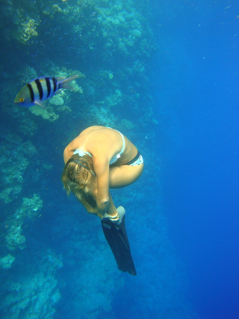 1000 images about free diving on pinterest blue hole diving and dean o 39 gorman - Porno dive video gratis ...