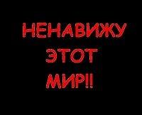 Картинка с надписью никого ненавижу, февраля