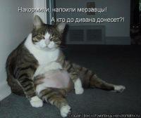 Артем Антонов, 28 июня , Яранск, id163948589