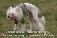 Сергей Золотов, 19 февраля 1986, Всеволожск, id9328359
