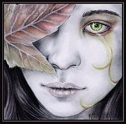 http://cs9997.vkontakte.ru/u7038385/117495324/x_e8f43621.jpg