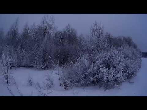 Охота Эстонская гончая заяц 4