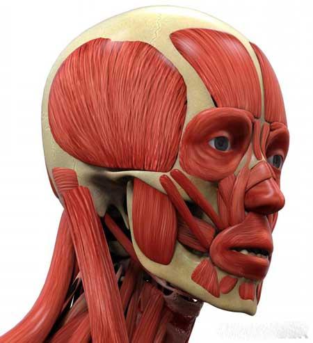 Подтяжка лица может быть осуществлена путем тренировки мышц в этой области.