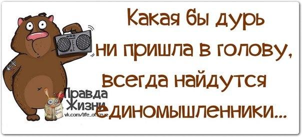 https://pp.vk.me/c619618/v619618123/158dd/oVoa9qiD1EI.jpg