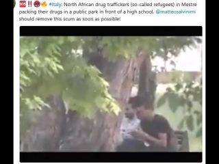 Italy: north african drug traffickers (so-called refugees) in mestre packing their drugs in a public park in front of a high sch
