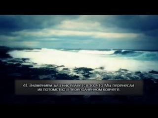 Красивое чтение суры 36 «Ясин». Якуб Насим. [HD] - 1482983719952.3gp.240.mp4