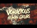 HOLLOW PROPHET VORACIOUS HUMAN GRUBS OFFICIAL LYRIC VIDEO 2018 SW EXCLUSIVE