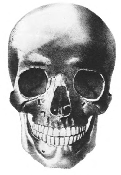 Админ Админович, 15 августа 1990, Кораблино, id218166458