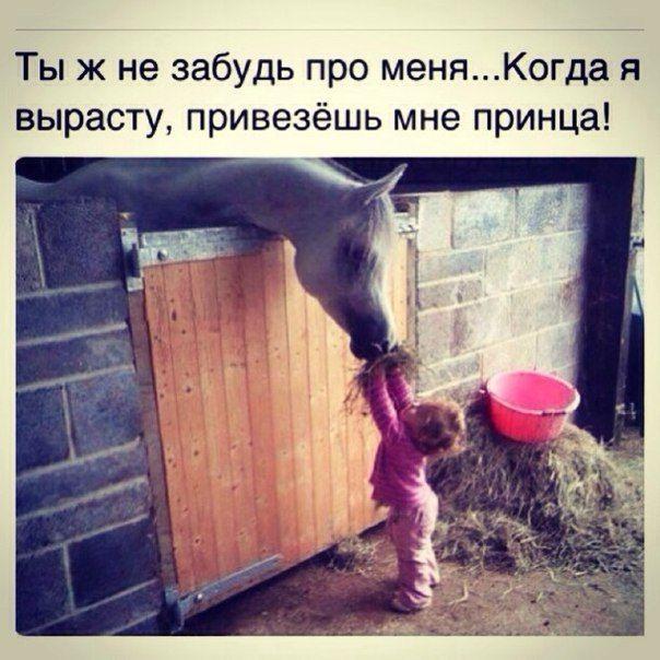 https://pp.vk.me/c608820/v608820372/94dd/MRVNYA7GHOk.jpg