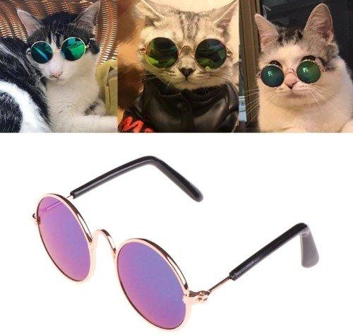 Очки для котов и собак за 098 - 099