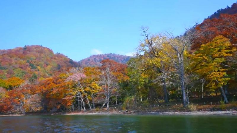 Япония Autumn Lake Chuzenji in Nikko 日光の紅葉•中禅寺湖と華厳の滝 日本の紅葉 JAPAN