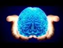 BBC 02 The Human Body An Everyday Miracle Тело человека Обыкновенное чудо
