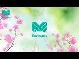 Поздравление с 8 Марта Morrisson.ru