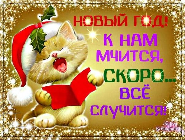 http://cs402219.vk.me/v402219782/63f6/bVQwa5fR7rw.jpg