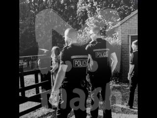В Британии полицейские