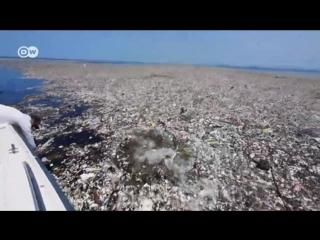 Die Vermüllung der Meere _ DW _ 08.06.2018