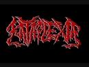 Kataplexia - Inexplicable Extinction