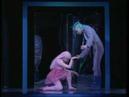 Arthaus 100234 PROKOFIEV S Cinderella Lyon National Opera Ballet 1989
