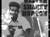 Big Walter Horton-Can't Keep Lovin' You