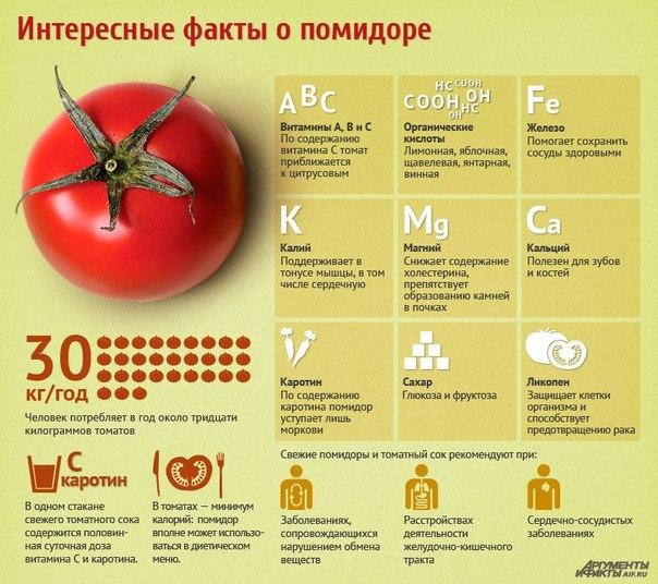 Yandex такси телефон заказ москва