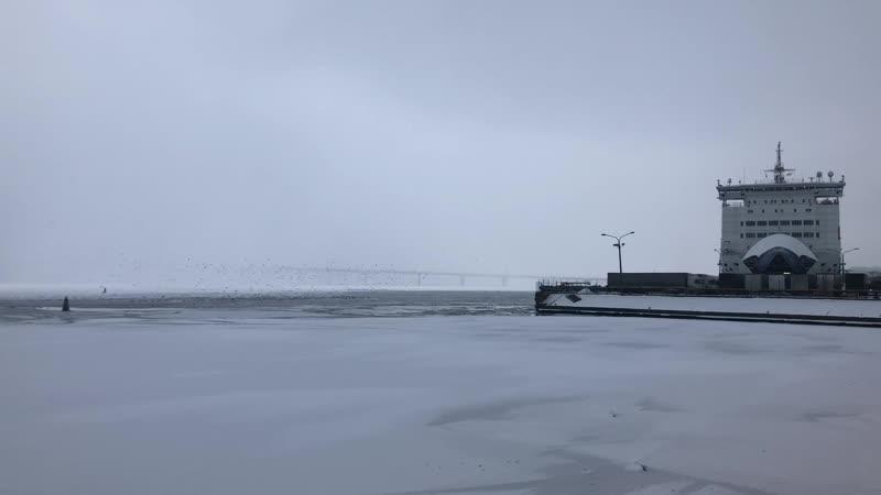 16dec18 Севкабель Порт / Sevkabel Port