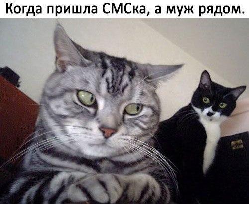Фото №456356333 со страницы Евгении Бормонтовой
