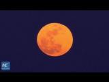 Таким увидел суперлуние и полное лунное затмение мир
