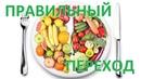5. Возврат к Адекватному Питанию. 2017 Замалеева Г. А.