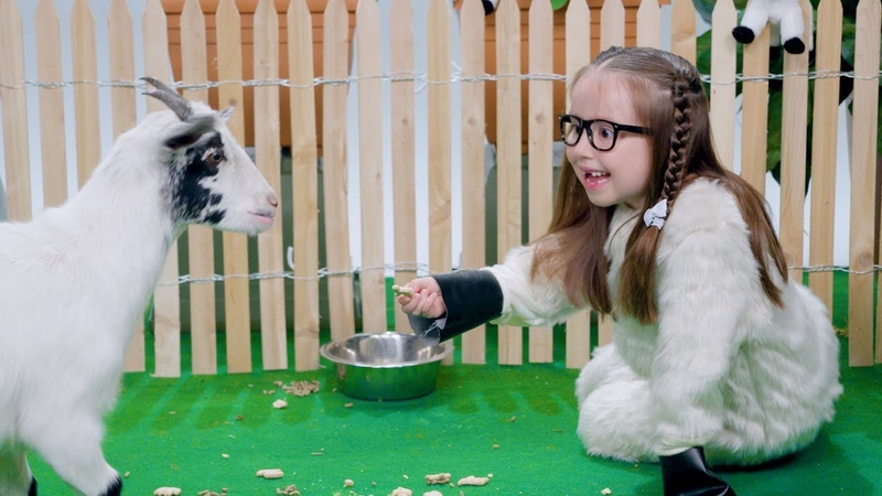 'She's Brielle-iant, Goats!'