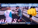 JORGE LINARES MESMERISING ON THE PADS SPEED POWER