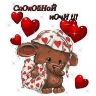 Спокойной ночи!!!