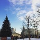 Артём Волков фото #33