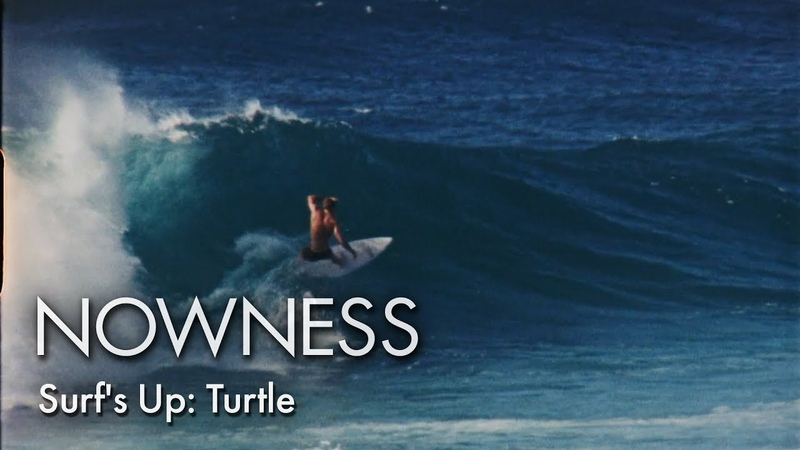 Surfs Up Turtle
